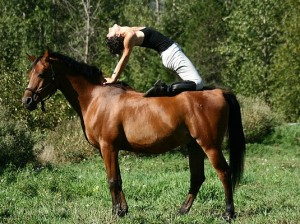 yoga-paard
