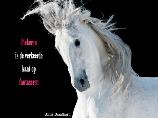 quote-sonja-braafhart