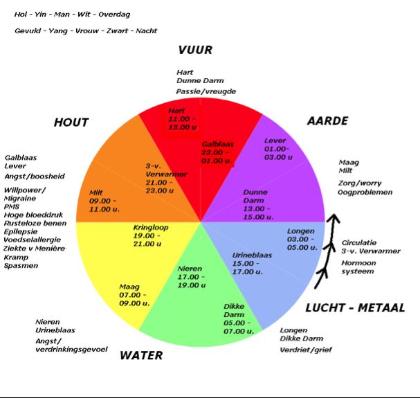acupunctuur-klok-orgaan