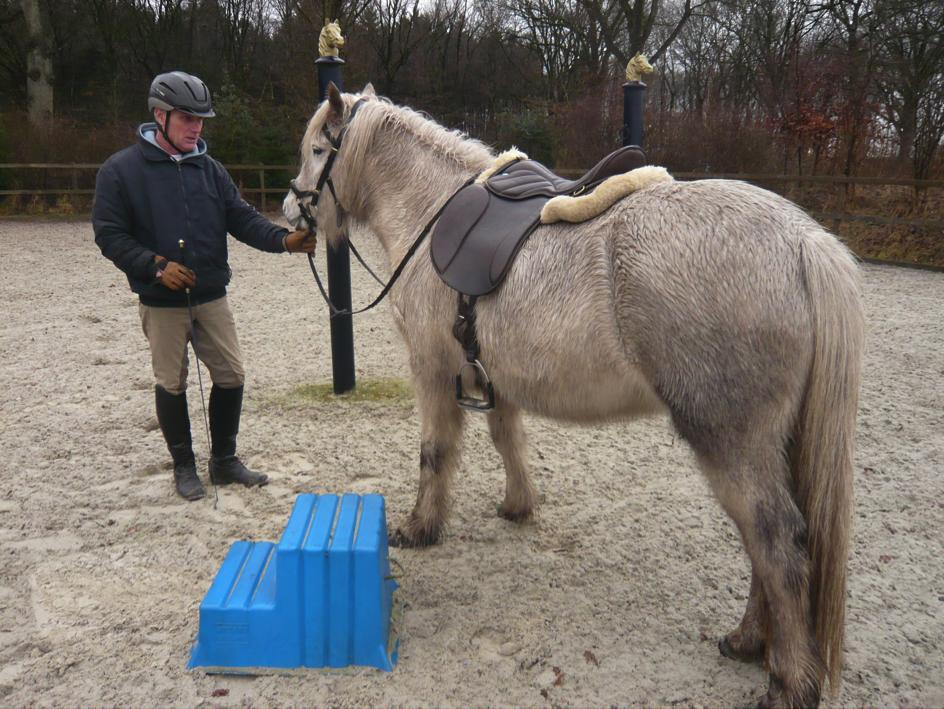 opstijgen-paard