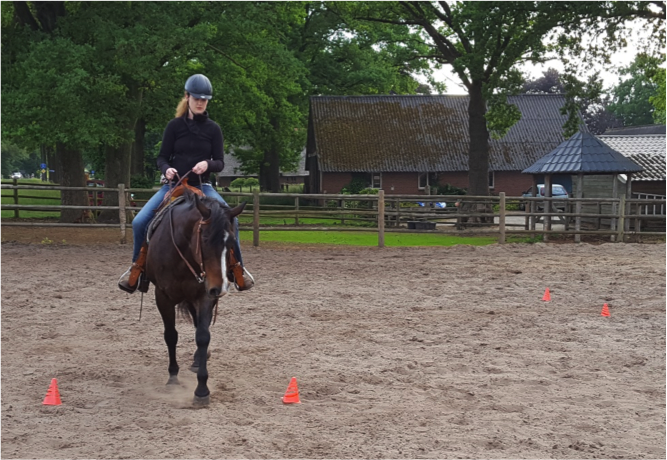 oefening-pionnen-paard