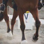 Deel 2: Paardensport is niet gevaarlijk, ruiters doen gevaarlijk – 3 tips!